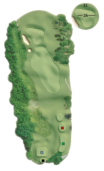 Blackstone National Golf Club – 13th Hole - Par 3 Layout
